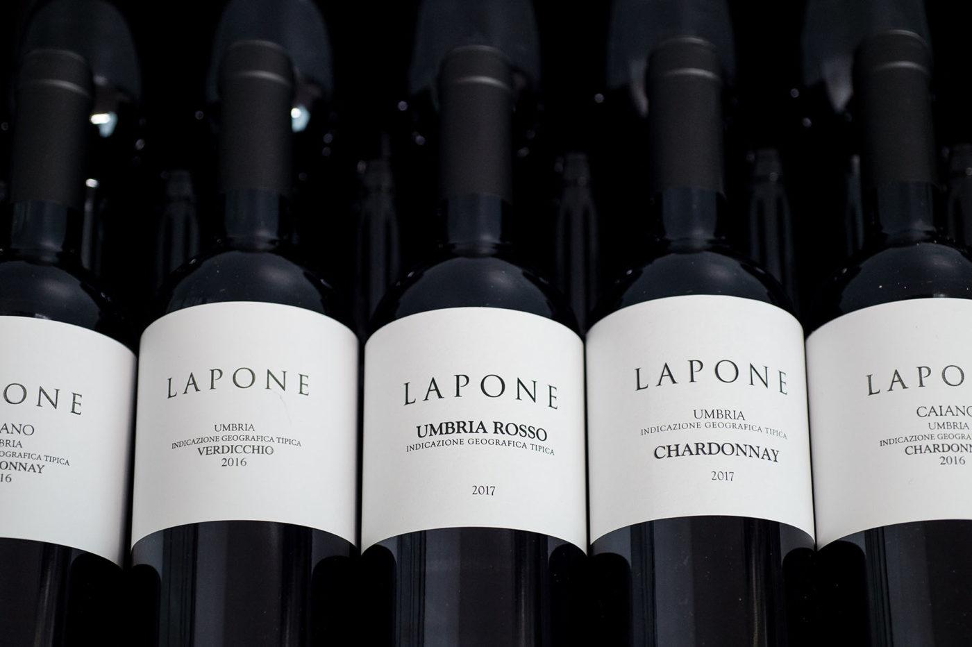 Lapone-14