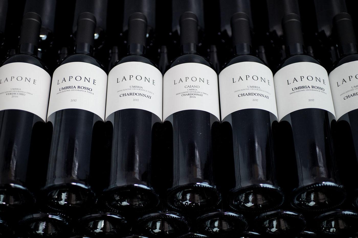 Lapone-15